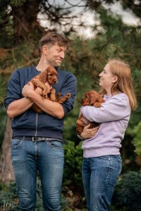 Hodowla psów rasy seter irlandzki i flat coated retriever